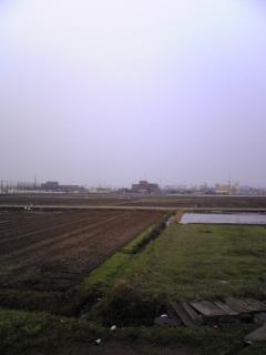 朝の田園_e0063268_2332378.jpg