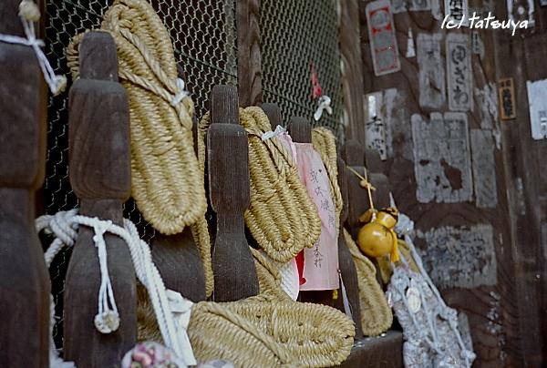 Apr.  17  (thu)  長谷寺の桜 1_f0139991_23364846.jpg