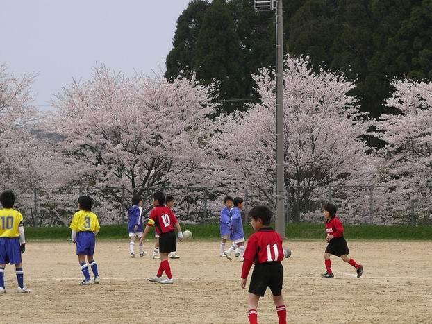 さくらサッカー。_c0107612_932253.jpg