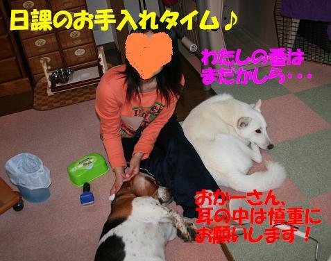 f0121712_1515627.jpg