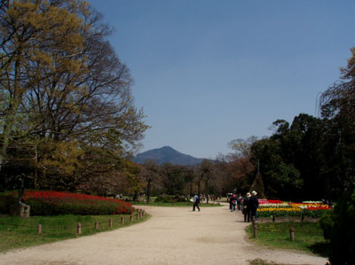 植物園2_e0048413_20575460.jpg