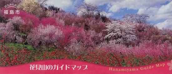 みちのく観桜行 (花見山)_d0065324_1113571.jpg