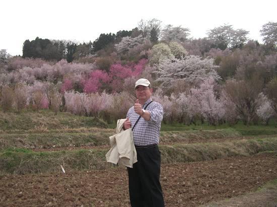 みちのく観桜行 (花見山)_d0065324_1144460.jpg