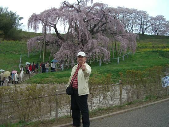 みちのく観桜行 掉尾 (三春の滝桜)_d0065324_1829771.jpg