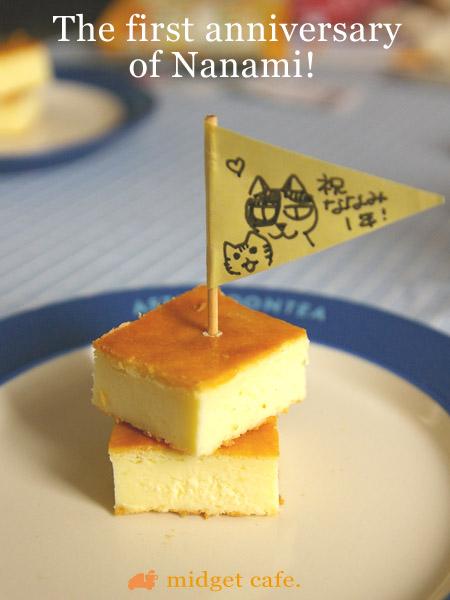 猫が家に来て一周年ケーキ