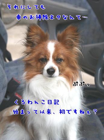 d0013149_8203587.jpg