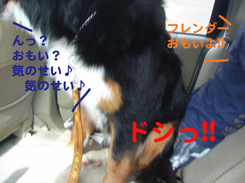 e0124868_12335324.jpg