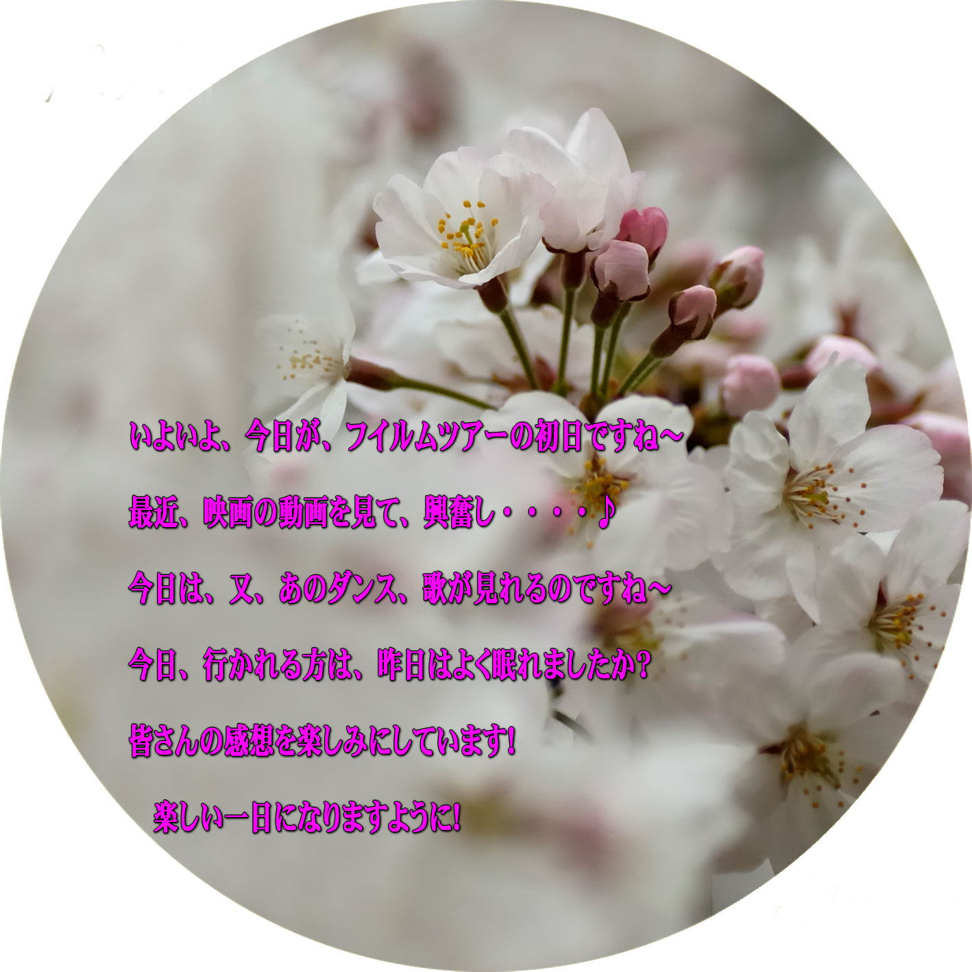 e0077875_8122272.jpg