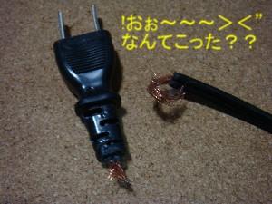 a0074033_2131257.jpg