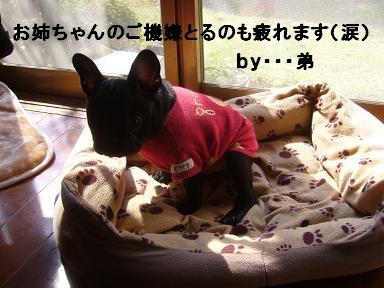 b0134197_15141040.jpg