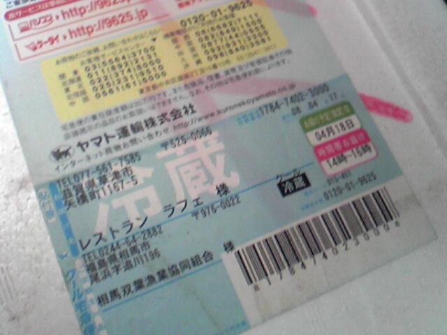魚_b0115006_22581245.jpg