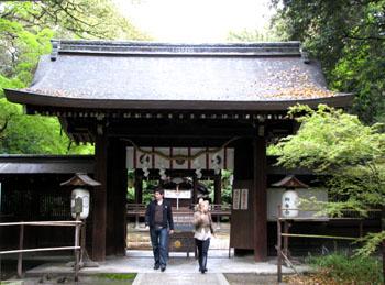 梨の木神社 ヤマブキ_e0048413_2232650.jpg