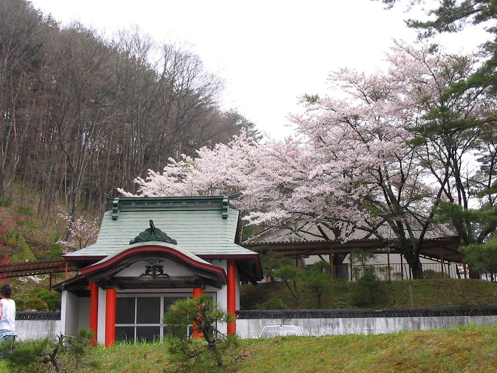 遠野桜マップ(広域)_d0001843_23132252.jpg