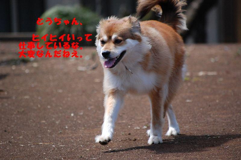 b0054391_74019100.jpg