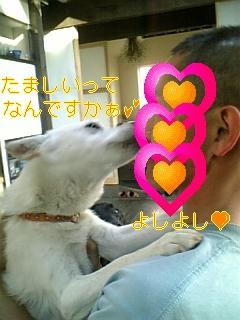 f0148927_16453265.jpg