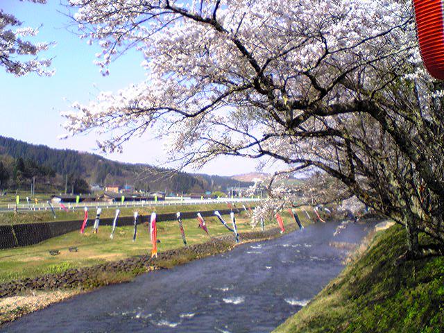 春・爛漫_f0081443_17573768.jpg