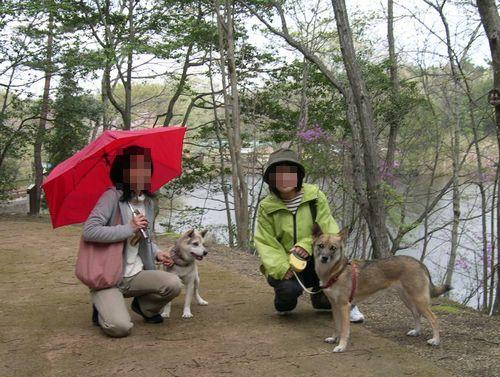 矢田丘陵ハイキング&美犬ルルちゃんとの逢瀬_b0025947_2391871.jpg