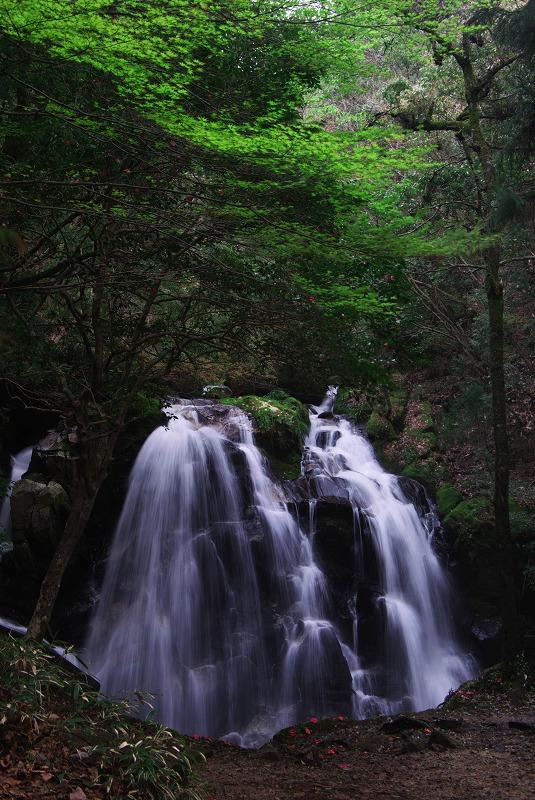 新緑の滝_f0155048_23283922.jpg