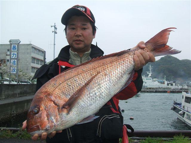 13日水島ヒラバエで真鯛79cm!50cm等!_d0114397_22135549.jpg
