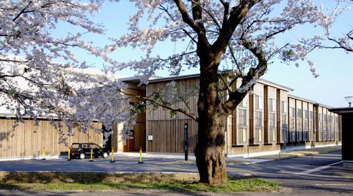 桜と国際教養大学宿舎_e0054299_1193015.jpg