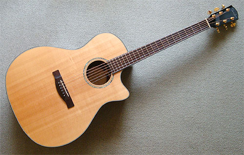 久々に Fender Acoustic GA-45SCE_c0137404_22534100.jpg