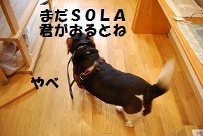 d0104209_22364168.jpg