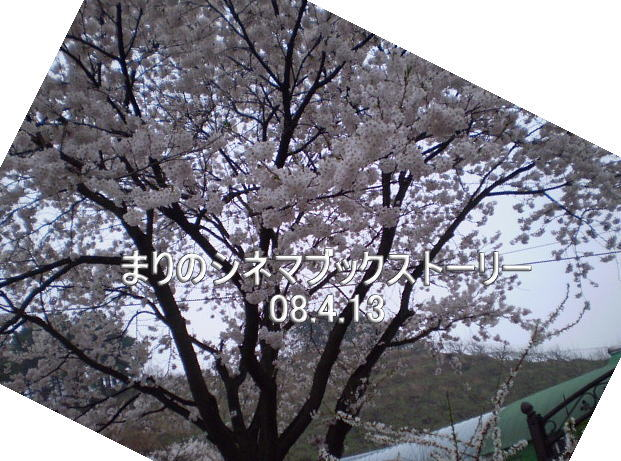 d0020443_2023298.jpg