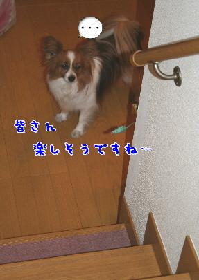 d0013149_8272572.jpg