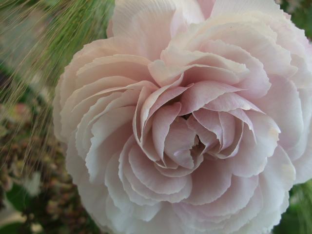 オークリーフ花の教室(望月さんの作品)_f0049672_16264369.jpg