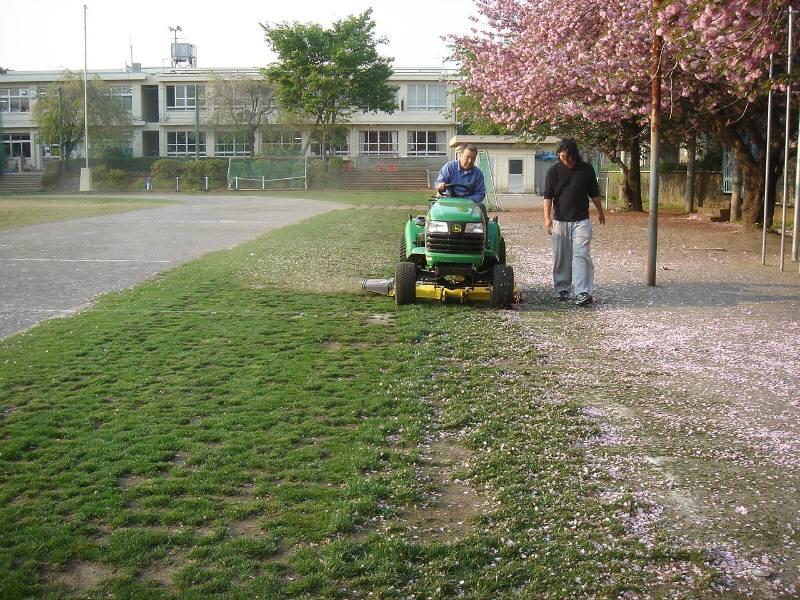 緑の芝生はみんなの友達_f0059673_22141266.jpg