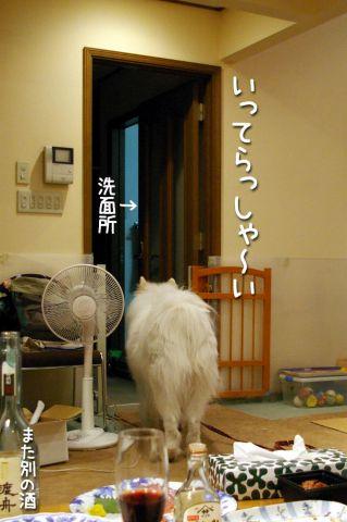 亜美さんといっしょ♪編_c0062832_1949594.jpg