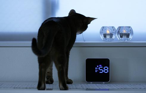 [猫的]電波時計_e0090124_811401.jpg