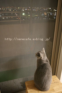 f0121232_22244780.jpg