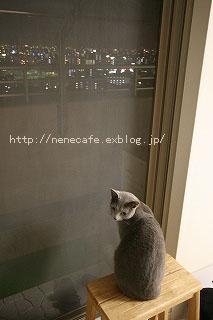 f0121232_22252448.jpg
