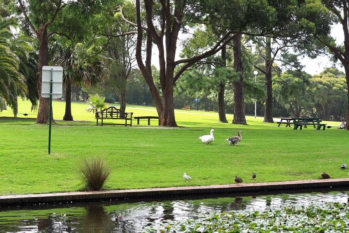 Wollongkong(ウーロンゴン) ~その5・Botanic Garden~_f0084337_201517.jpg