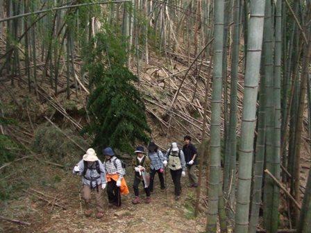 早朝ハイク「京羅木山473m」 参加7名_d0007657_8365232.jpg