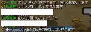 b0126064_19208.jpg