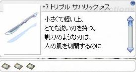 b0105167_0455966.jpg