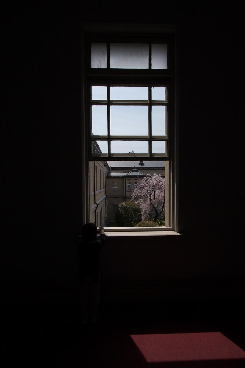京都府庁 春の一般公開  3_f0021869_20484267.jpg