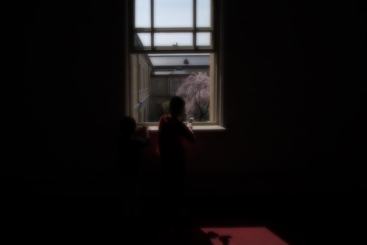 京都府庁 春の一般公開  3_f0021869_20541745.jpg