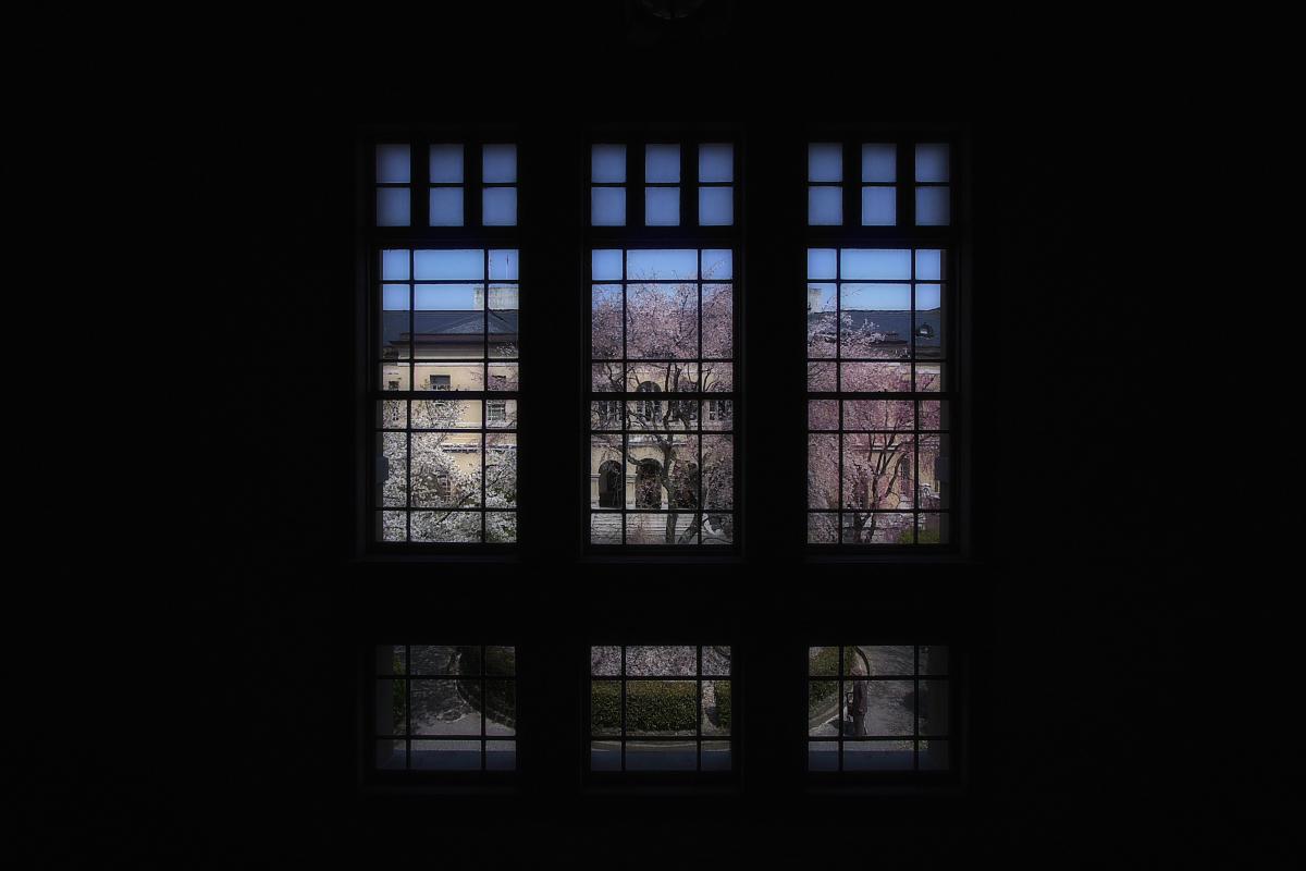 京都府庁 春の一般公開  3_f0021869_205509.jpg