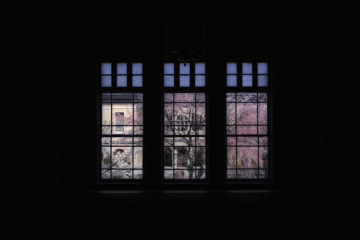 京都府庁 春の一般公開  3_f0021869_2111840.jpg