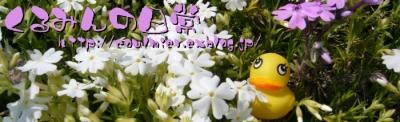 e0041979_9405968.jpg