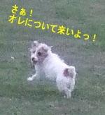c0064796_2072769.jpg