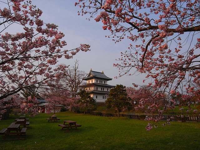 4月23日、松前城の桜_f0138096_11492795.jpg