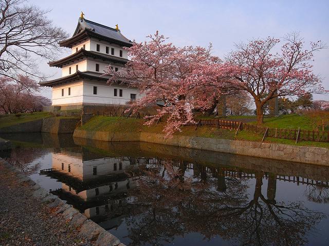 4月23日、松前城の桜_f0138096_11494092.jpg