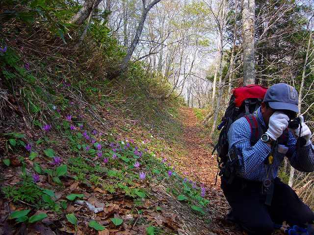4月23日、笹山で見た花の写真をメインに-その2-_f0138096_1724955.jpg