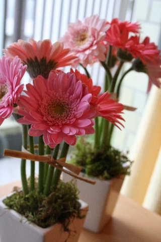 教室・・・苺のショートケーキ&トピアリーツリーアレンジ_f0141419_618428.jpg