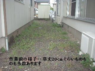 f0031037_17511643.jpg