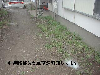 f0031037_17533486.jpg